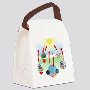 Carbon cycle Canvas Lunch Bag