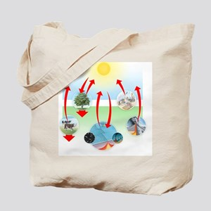 Carbon cycle Tote Bag