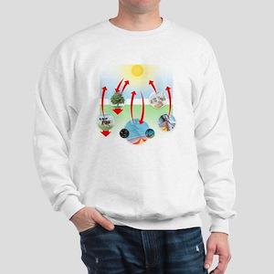 Carbon cycle Sweatshirt
