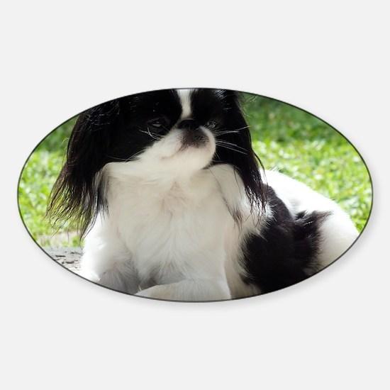 2013Cal-Jasmine Sticker (Oval)