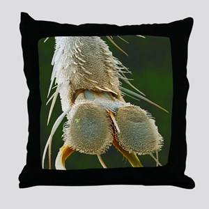Cluster fly foot, SEM Throw Pillow
