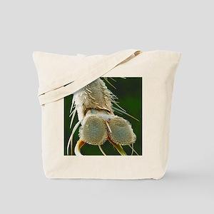 Cluster fly foot, SEM Tote Bag