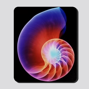 Coloured X-ray of the Nautilus shell Mousepad