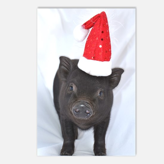 Micro pig with Santa hat Postcards (Package of 8)