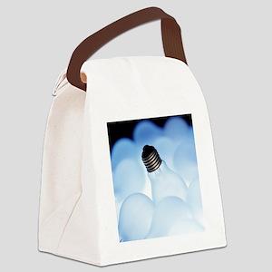 Electric light bulbs Canvas Lunch Bag