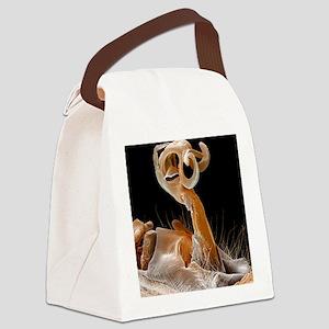 Damselfly penis, coloured SEM Canvas Lunch Bag