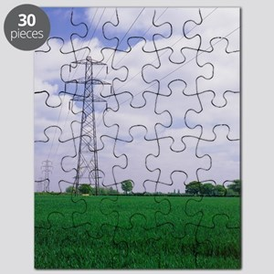 Electricity pylons Puzzle