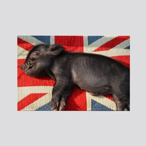 Micro pig chilling Rectangle Magnet