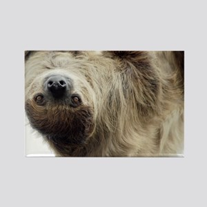 Sloth 5x7 Rug Rectangle Magnet
