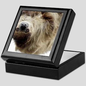 Sloth 5x7 Rug Keepsake Box