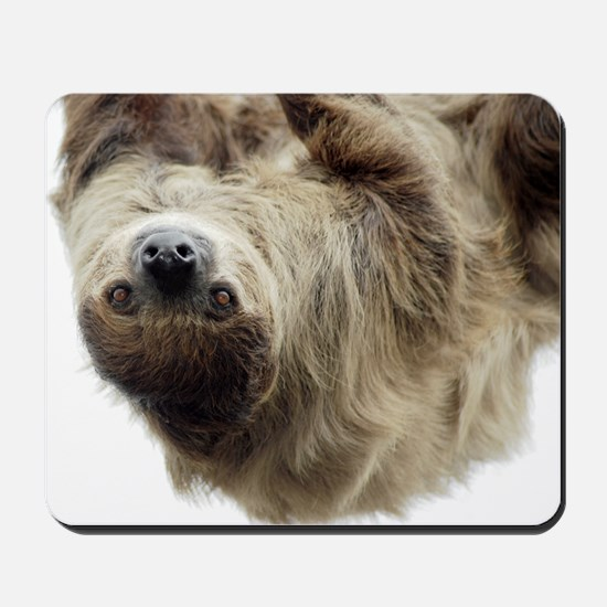 Sloth 5x7 Rug Mousepad
