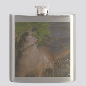 European otter Flask