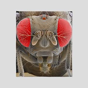 Fruit fly, SEM Throw Blanket