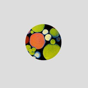 False colour SEM of Sephadex beads Mini Button