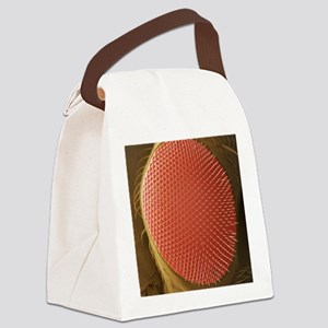 Fruit fly compound eye, SEM Canvas Lunch Bag