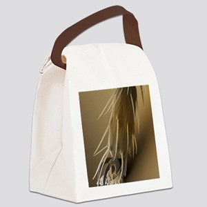 Fruit fly foot, SEM Canvas Lunch Bag