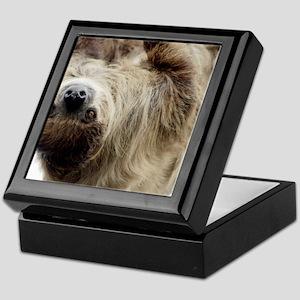 Sloth Pillow Case Keepsake Box