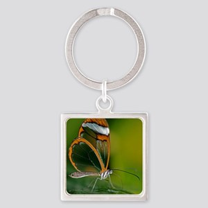 Glasswing butterfly Square Keychain
