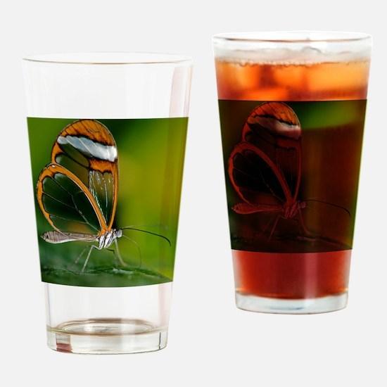 Glasswing butterfly Drinking Glass