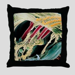 Inner ear organ of Corti Throw Pillow