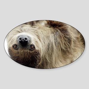 Sloth Bucket Bag Sticker (Oval)
