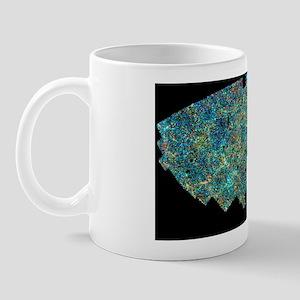 Map of galaxy distribution of 2 million Mug