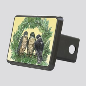 Three FLedglings Ext Bkg Rectangular Hitch Cover