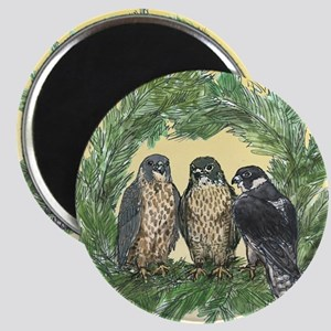 Three FLedglings Ext Bkg Magnet