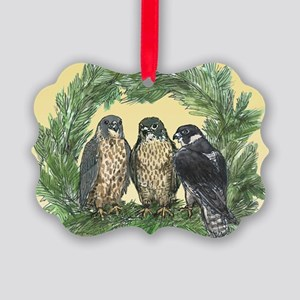 Three FLedglings Ext Bkg Picture Ornament