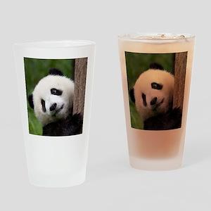 Panda Cub Drinking Glass