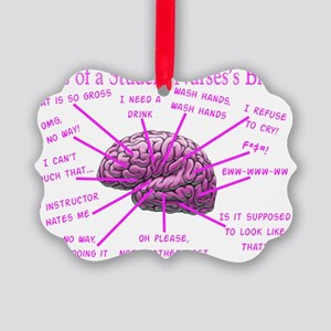 atlas student nurse brain PINK Picture Ornament