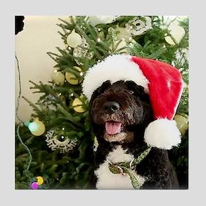 Bo the Dog Tile Coaster