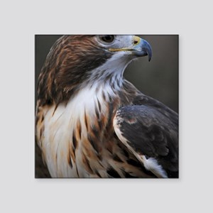"""Red-tailed Hawk Square Sticker 3"""" x 3"""""""