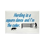 Herding is A Dance Rectangle Magnet (100 pack)