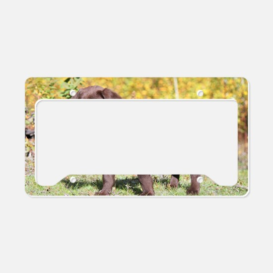 Baby Glitzy License Plate Holder