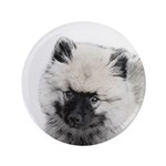 Keeshond Puppy (Drawing) 3.5