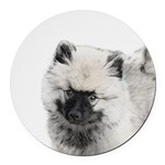 Keeshond Puppy (Drawing) Round Car Magnet