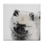Keeshond Puppy (Drawing) Tile Coaster