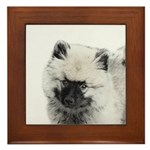 Keeshond Puppy (Drawing) Framed Tile