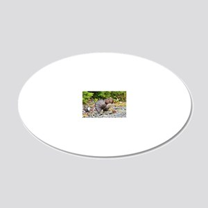 5x3oval_sticker 10 20x12 Oval Wall Decal