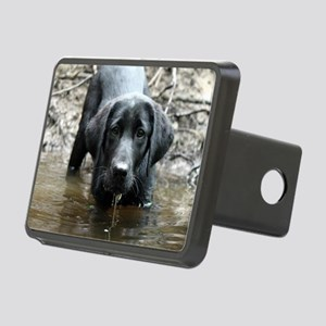 Victor Rectangular Hitch Cover