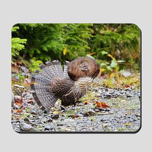 11 x17 print Mousepad