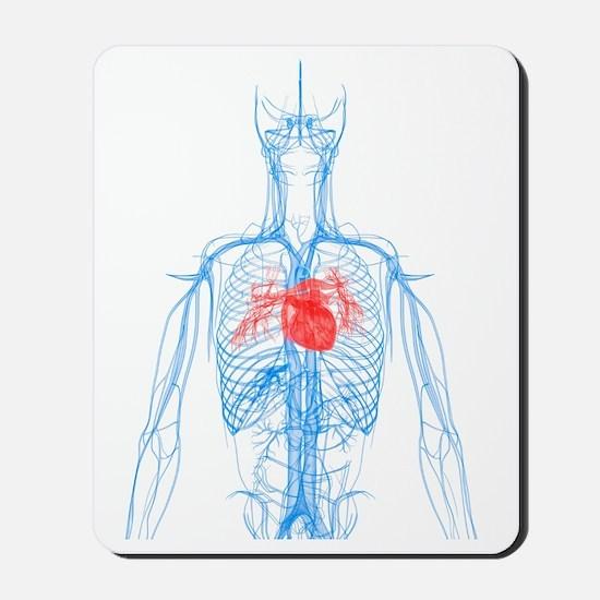 Cardiovascular system, artwork Mousepad