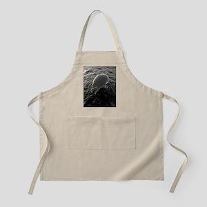 Dust mite, artwork Apron
