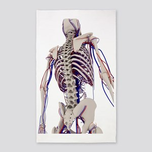 Human anatomy, artwork 3'x5' Area Rug