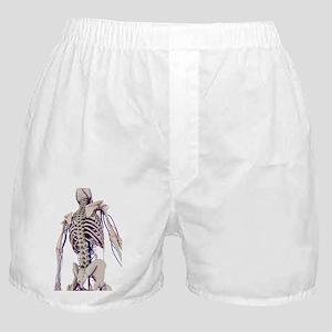 Human anatomy, artwork Boxer Shorts