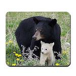 Mama & Baby Bear Mousepad