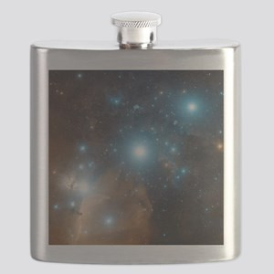 Orion's belt Flask