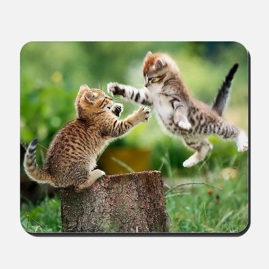 Ninja Kittens Mousepad