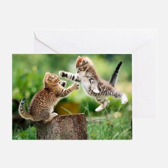 Ninja Kittens Greeting Card